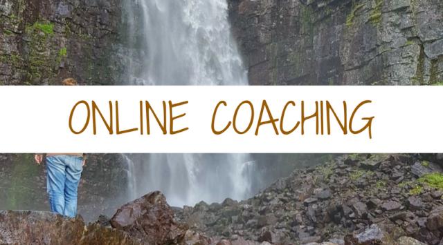 Online Coaching (1)